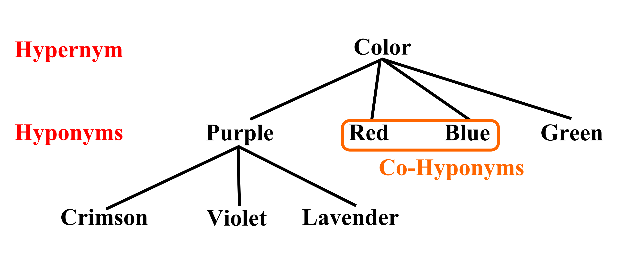 graph of hyponyms and hypernyms